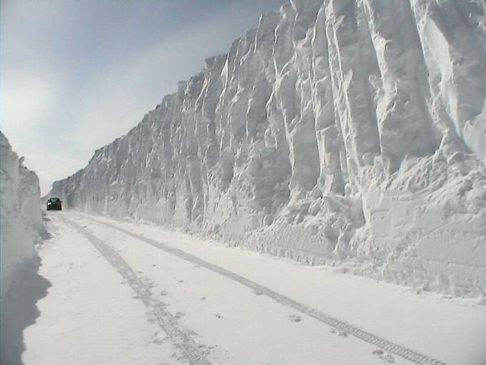 Snow and Ice   Dusky's Wonders