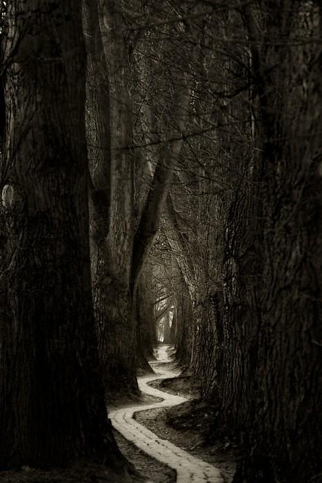 http://www.duskyswondersite.com/wp-content/uploads/2012/09/roads-pint.-erica-moore.jpg