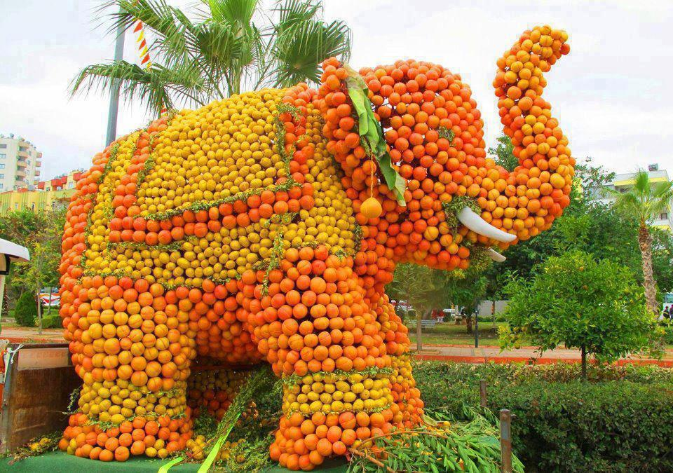 human-ingen-orange-elephant.jpg