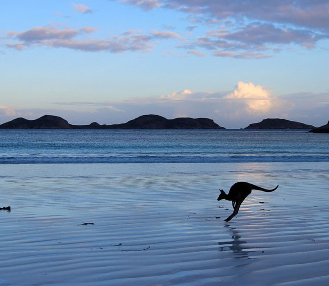ng,  Lucky Bay in Esperance, Western Australia,  by  Mandy Wilson