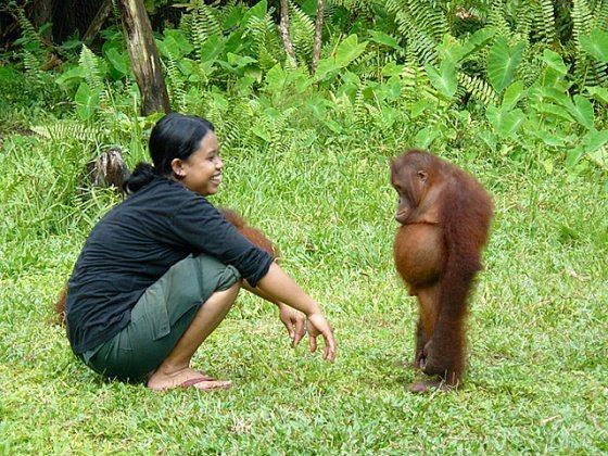 mixed species, woman and orangatang