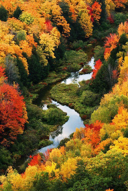 Porcupine Mountains Wilderness State Park - Michigan