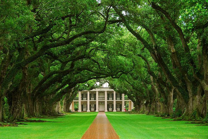 Oak Alley plantation, Louisiana, USA