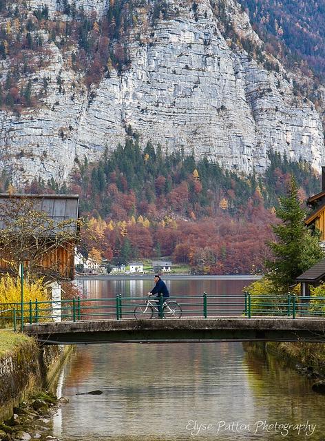 Austrian Alps bridge, by Elise Patton