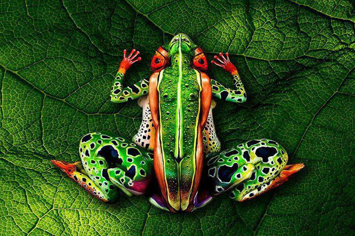 Body Art Illusions By Johannes Stoetter