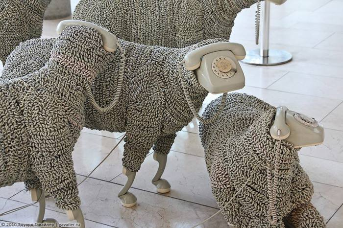 human ingen, phone-sheep via Dean, from Germany