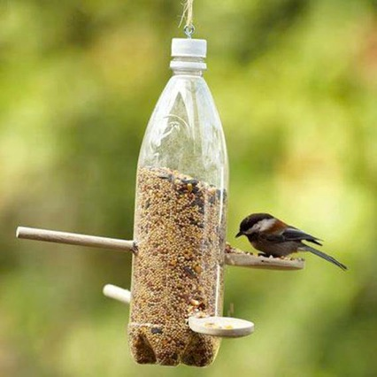 recycling, bird food