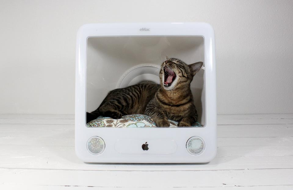Mac cat bed