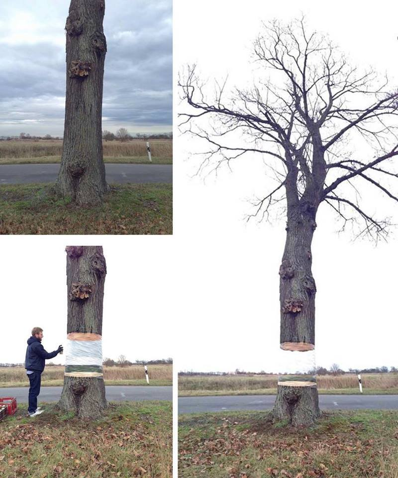 On Facebook. By Daniel Siering and Mario Shu in Potsdam, Germany.