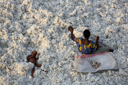 yann-arthus-bertrand-home-cotton