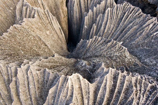 Tsingy de Bemaraha, a nature reserve on the western coast of Madagascar