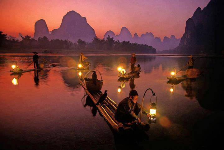 Traditional Fishing with Cormorants, River Li, China