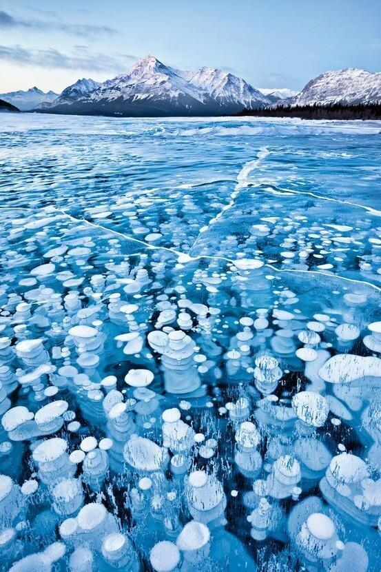Frozen bubbles, Canadian Rockies