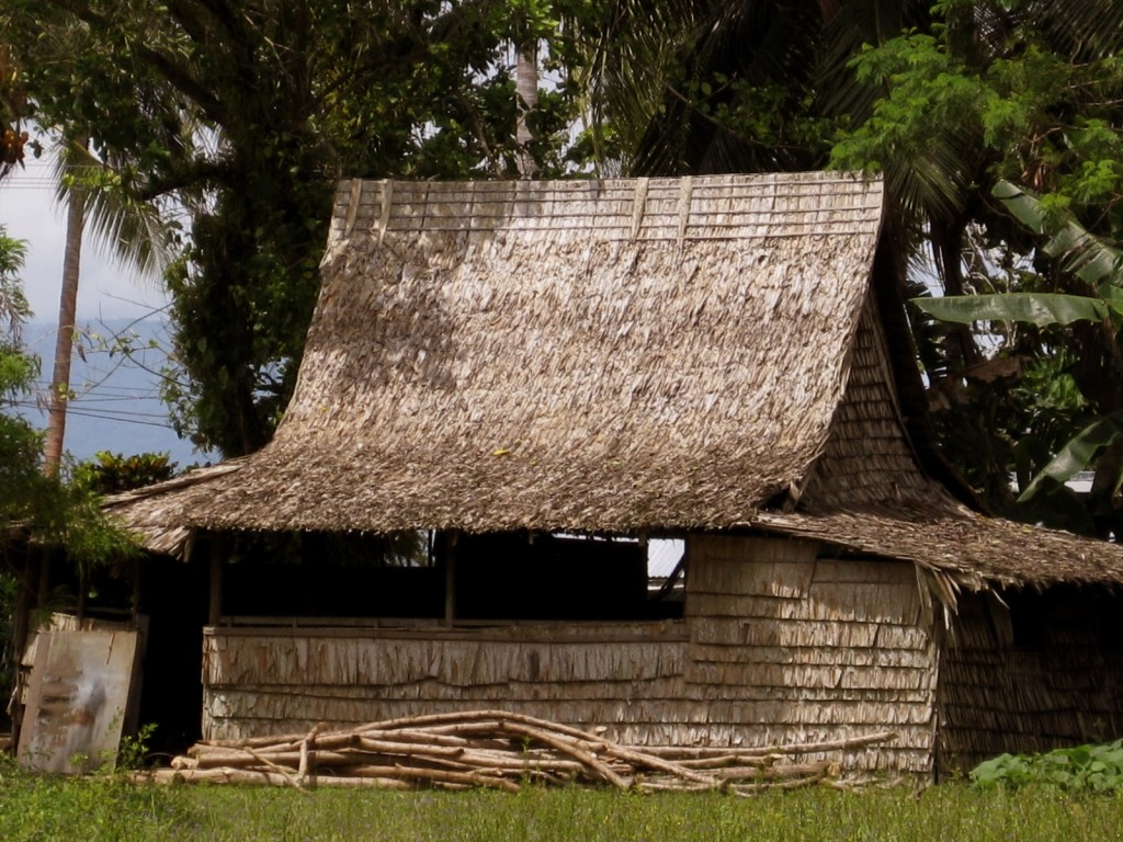 Leaf house in Solomon Islands