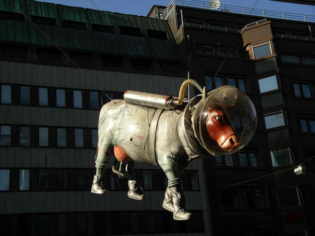 Space Cow, Stockholm, Sweden