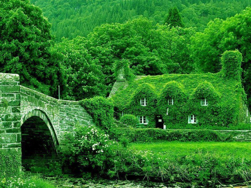 houses, (2)