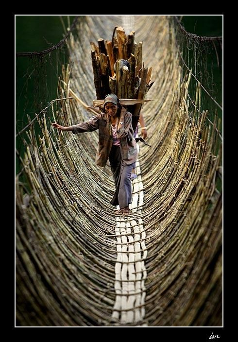 Cane bridge and woman carrying cane logs - Kabua village, Republic Of The Congo.