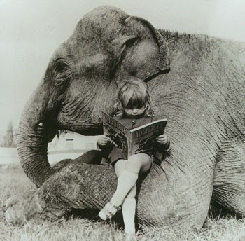 animal-black-and-white-children-elephant-kid-Favim.com-351835