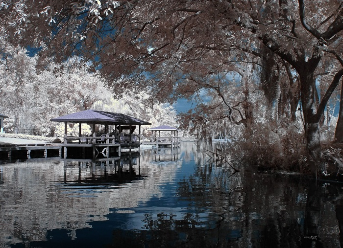 Infrared photography by Kort Kramer