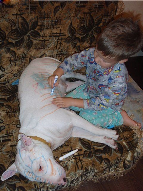 kids, coloring dog via kathleen