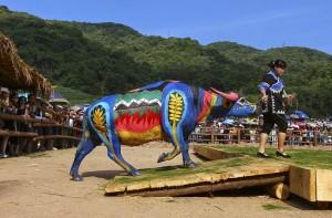 International Buffalo body painting competition, in Jiangcheng county, China.