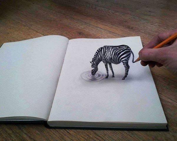 human ingen, zebra