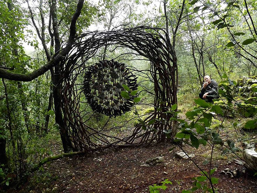 woods, 2