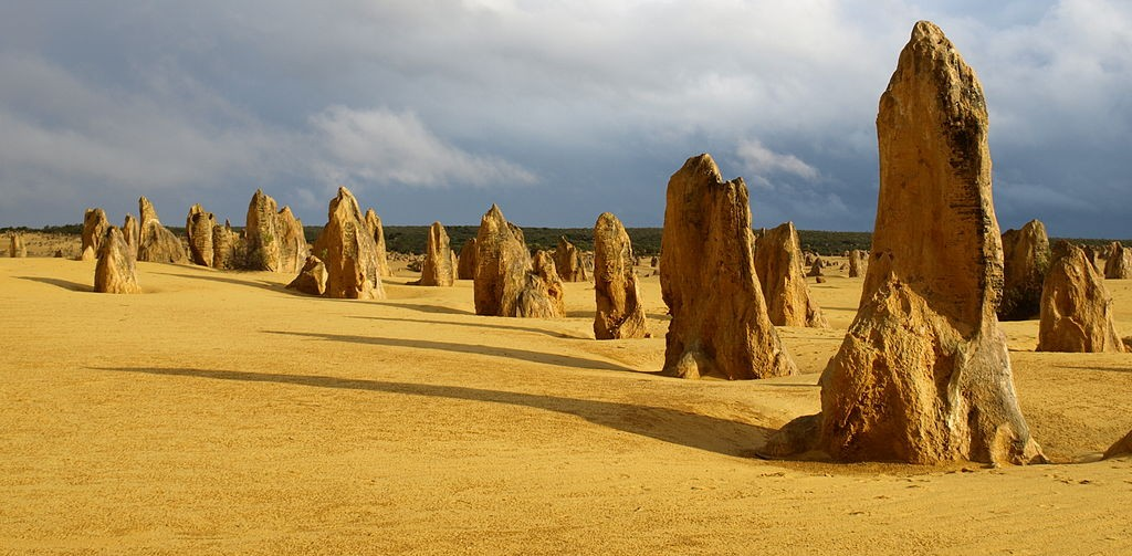 The Pinnacles are limestone formations contained within Nambung National Park. The raw material for the limestone came from seashells in an earlier era that was rich in marine life. These shells were broken down into lime-rich sands that were blown inland to form high mobile dunes.