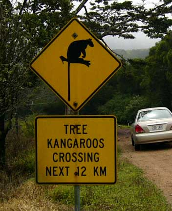 aus, tree-kangaroo-sign-1