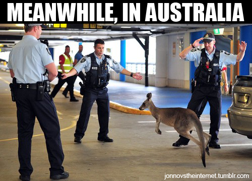 meanwhile-in-australia-00030