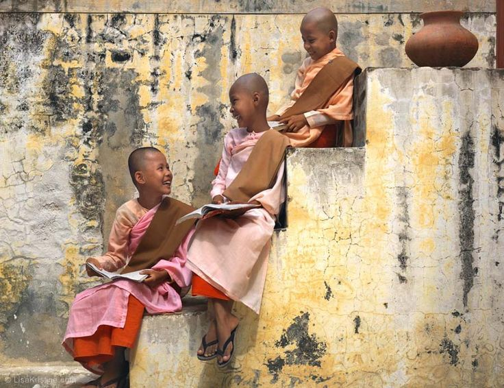 human ingen, lisa k. myanmar