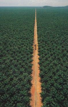 roads, 6