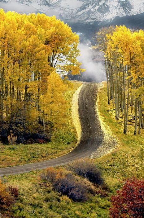 roads, Aspen Road, Boulder, Colorado