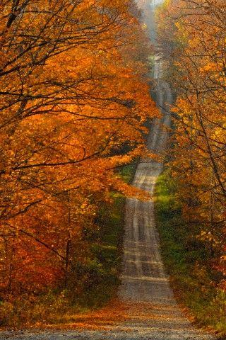 roads, orange