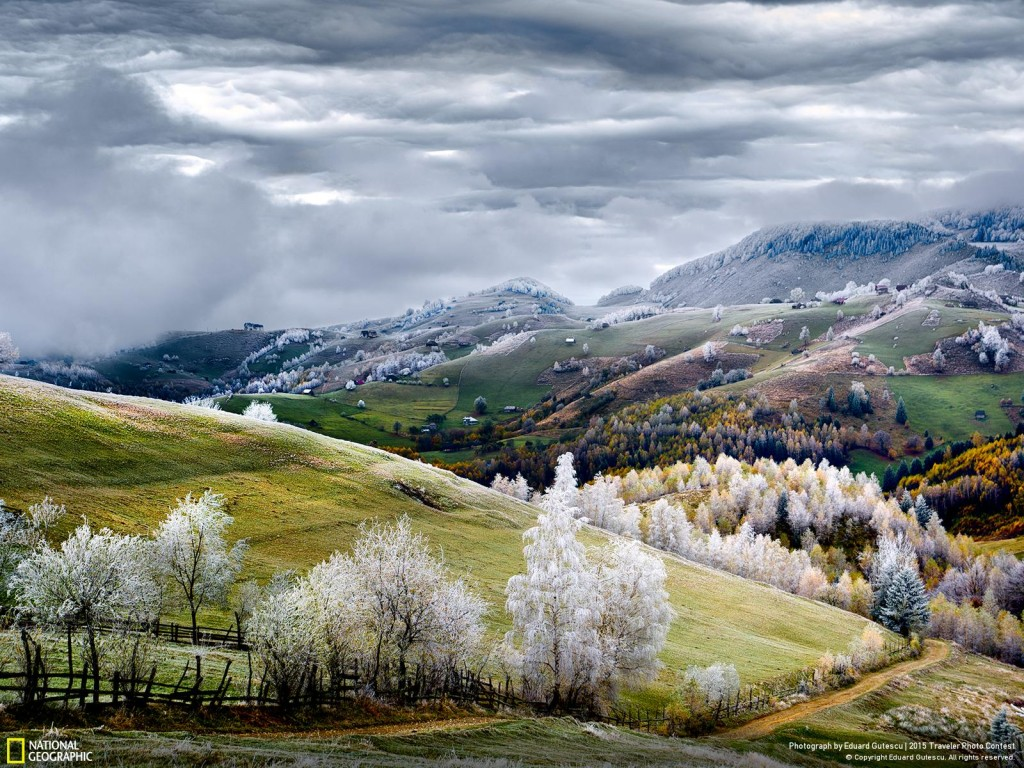 Romania by Eduard Gutescu