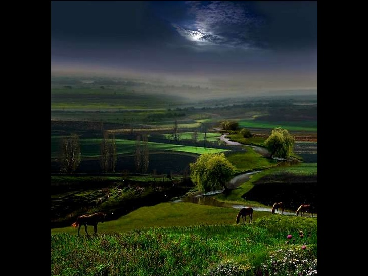 fine-art-photos-by-igor-zenin-1-29-728