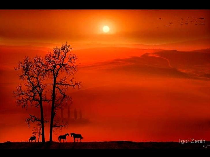 fine-art-photos-by-igor-zenin-1-30-728