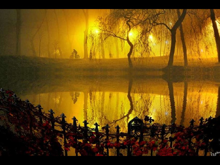 Images plus imagination dusky 39 s wonders for Fine art photography sites