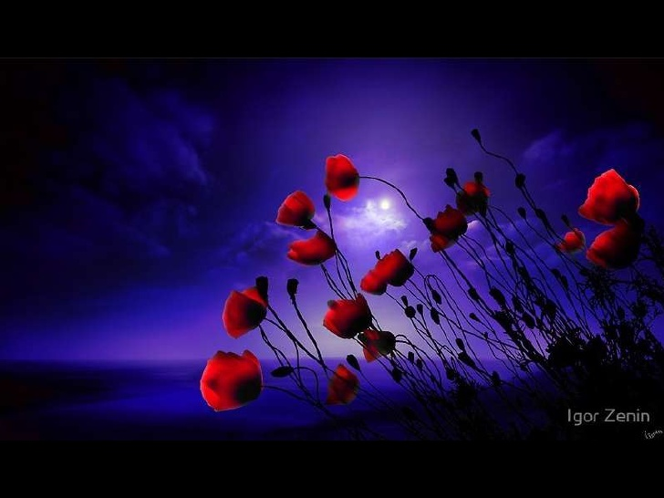 fine-art-photos-by-igor-zenin-1-6-728