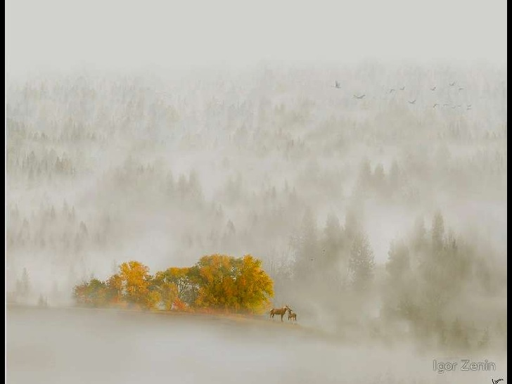 fine-art-photos-by-igor-zenin-2-19-728