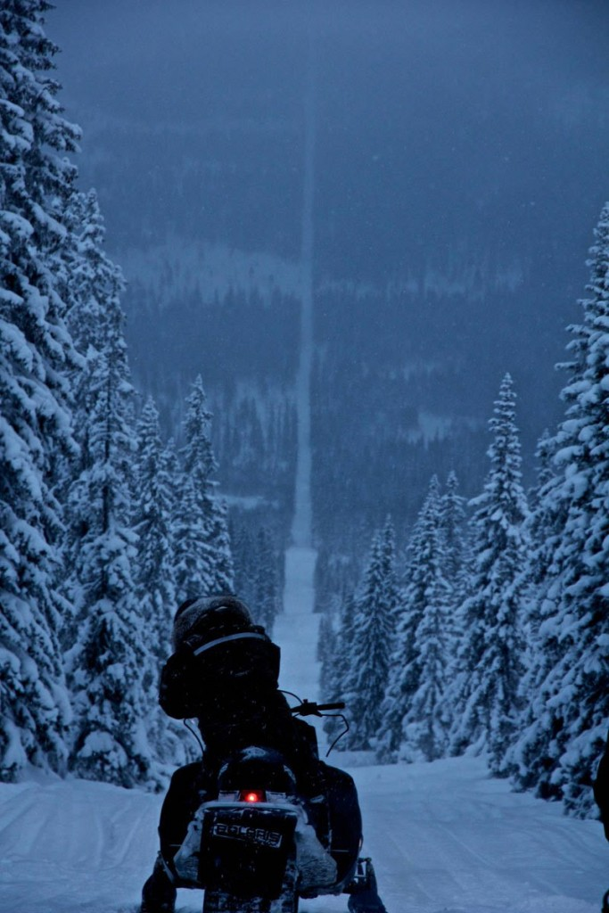 Snowmobiling on the Norway-Sweden border.