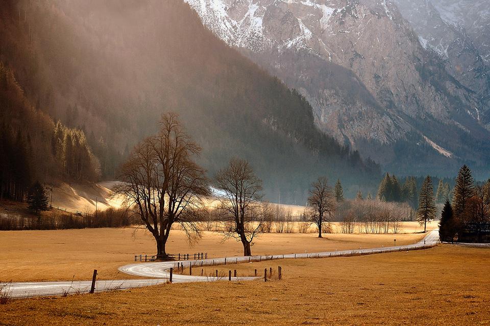 Slovenia again