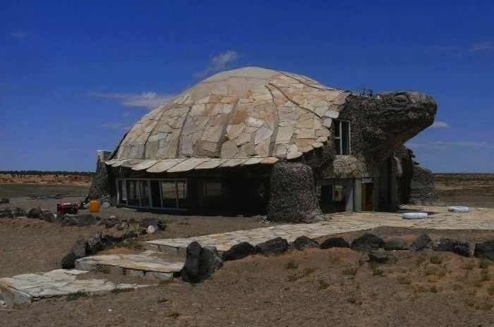 bizaar, turtle house