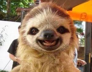 jeremy, sloth