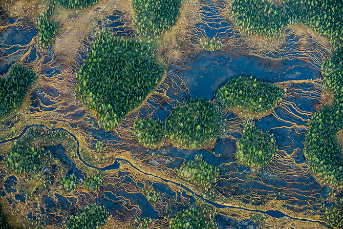 Aerial photograph. String bogs and coniferous forests in autumn in the Muddus National Park. Lapland, Sweden by Orsolya Haarberg.