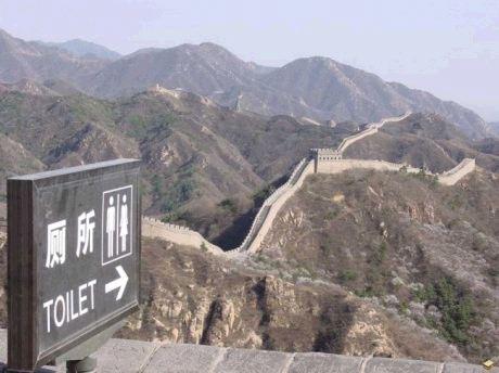 human ingen, china
