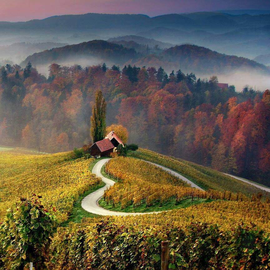 Heart-shaped road, Slovenia