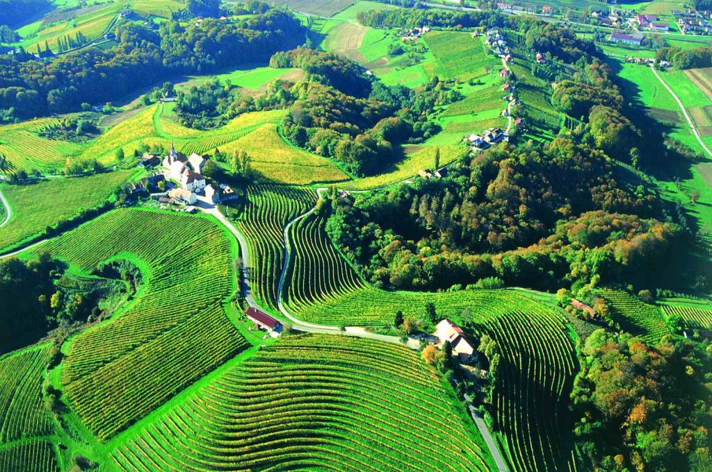Pannonian plains, Slovenia
