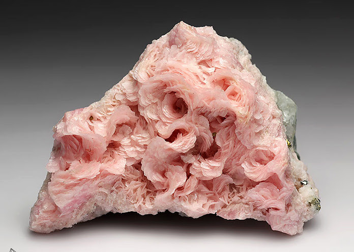 Rhodochrosite, mineral also known-as the rose of the inca.