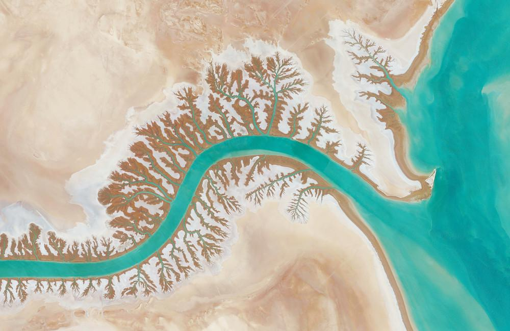 Dendritic drainage systems are seen around the Shadegan Lagoon by Musa Bay in Iran. The word 'dendritic' refers to the pools' resemblance to the branches of a tree, and this pattern develops when streams move across relatively flat and uniform rocks, or over a surface that resists erosion.